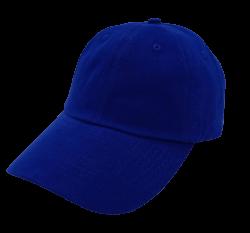 8d625431d0293 DG500 GABARDINA-Azul Rey